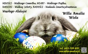 Amalia - życzenia Wielkanoc 2015